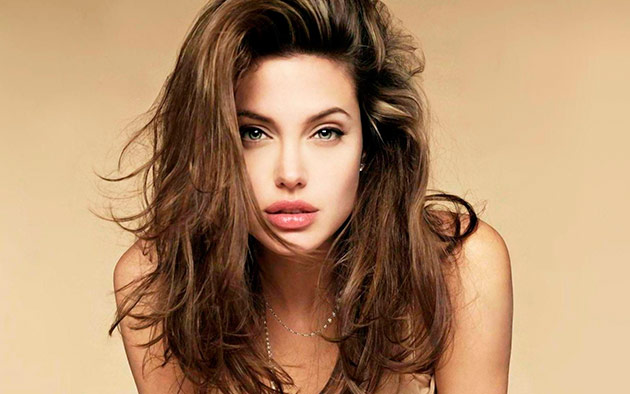 Angelina Jolie with beautiful blowout hair
