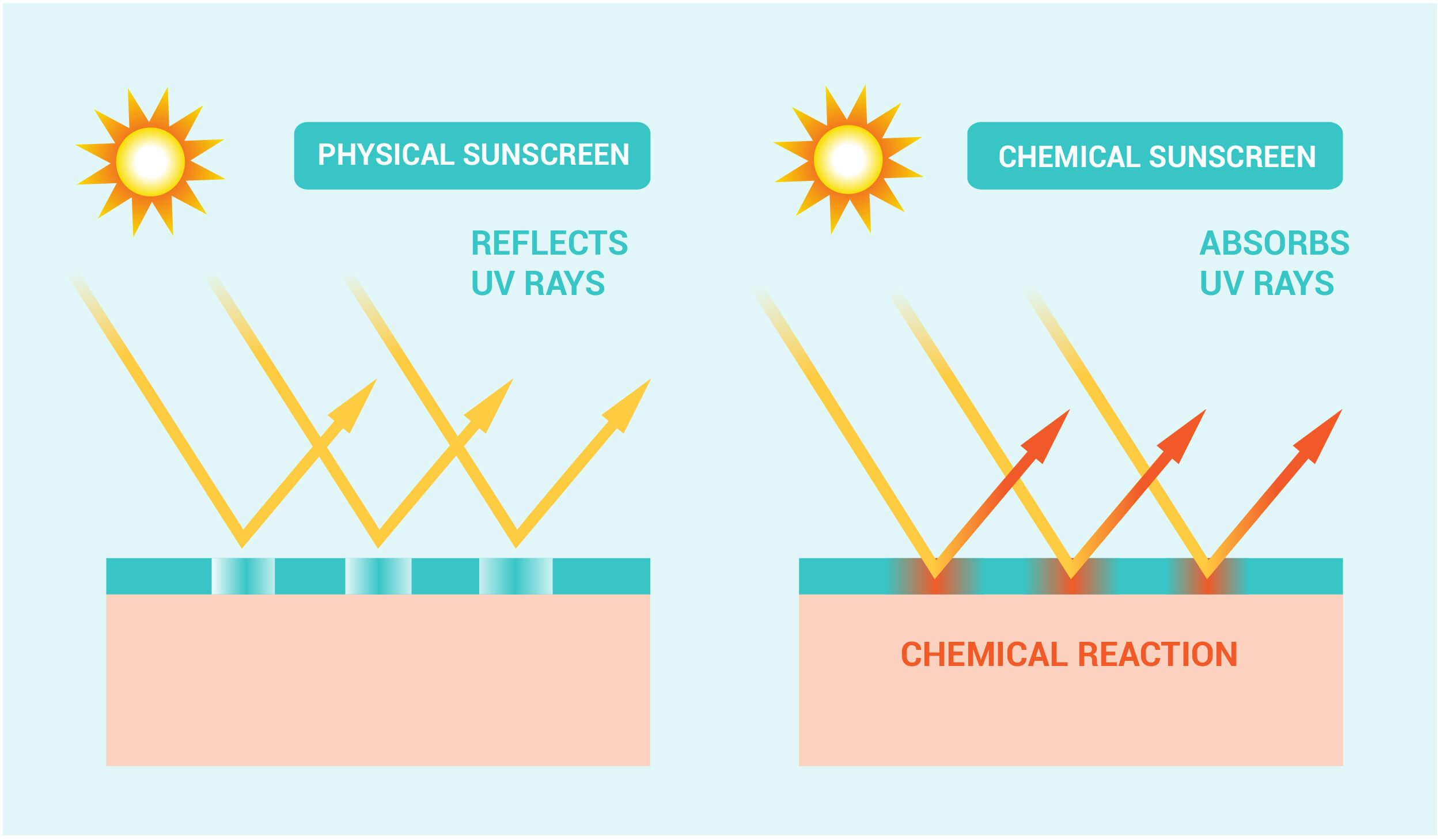 Infographic showing the difference between physical and chemical sunscreens